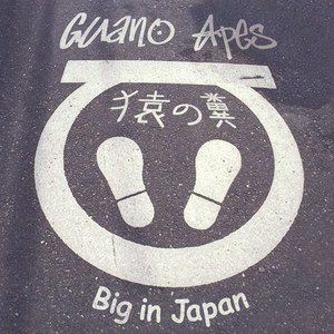 photo Guano Apes - Big In Japan (2000)_1